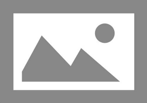 Reinigingsbezem / gemeentebezem kunstvezel 40 cm met steelhouder